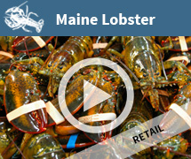 Lobster Video